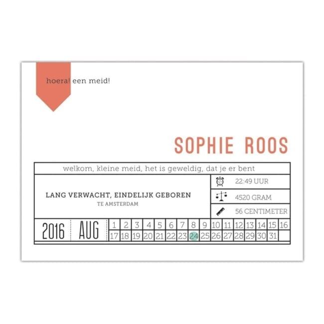 Geboortekaartje Modern Ticket is origineel en eigentijds: in de vorm en uitvoering van een ticket geeft alle gegevens op een visuele manier weer.