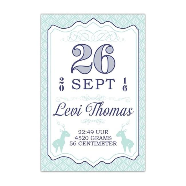 Dit kaartje mag dan wel Geboortekaartje Vintage Datum heten, het is meer mix tussen eigentijdse en vintage elementen. Datum staat in mooie vintage cijfers.