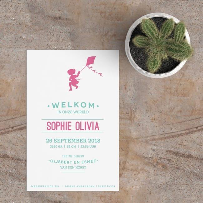 Geboortekaartje Meisje met Vlieger is een fris typografish ontwerp, waarbij de tekstuele plaatsing en het silhouet voor een mooie presentatie zorgt.