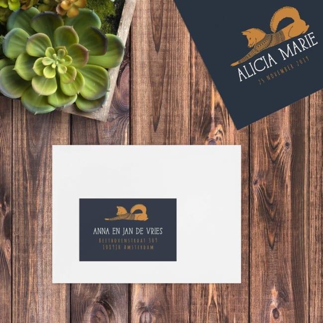 Een leuk vosje, speels getekend, met een truitje aan, ligt boven het adres. Deze labels sluiten qua ontwerp aan bij geboortekaartje Speelse Vos.