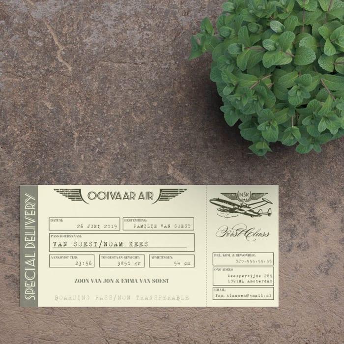 Een heus vliegtuigticket als geboortekaartje! Veel leuke details op geboortekaartje Vintage Vliegtuigticket kunnen gepersonaliseerd worden.