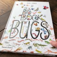Boek van de Maand   Het Bijzondere Beestjes Boek   Mei 2020